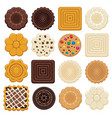 set of colorful chocolate and biscuit chip cookies vector image