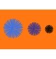 three flowers vector image