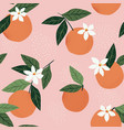 tropical seamless pattern with oranges on a pink vector image