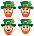 leprechaun head vector image