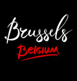 Belgium Brussels hand-lettered Country and Capital vector image