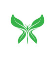 butterfly leaf vector image vector image