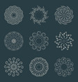 decorative design elements patterns set vector image vector image