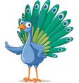 funny cartoon peacock character vector image