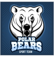 Polar Bear Head mascot vector image