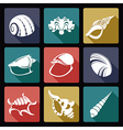 Shell flat icons2 vector image vector image