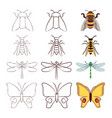 sketch line and flat insects collection vector image vector image