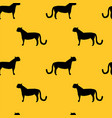 wild cat silhouettes seamless pattern vector image vector image
