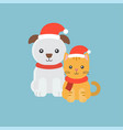 cute puppy and kitten for christmas posterflat vector image vector image