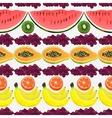 Fresh fruit pattern vector image vector image