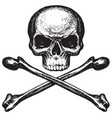 skull and crossbones pirate symbol or danger sign vector image