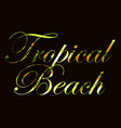tropical beach text with curls of palm leaves vector image vector image