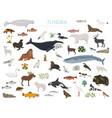 tundra biome terrestrial ecosystem world map