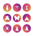 white insect silhouettes popular insect icons set vector image