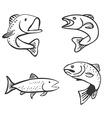 Set of Fish Isolated on White Background vector image