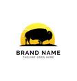 buffalo logo concept creative minimal design vector image