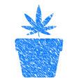cannabis pot grunge icon vector image vector image