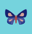 colorful icon of butterfly isolated on blue vector image