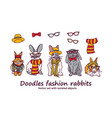 doodles fashion rabbits pets animals isolated vector image