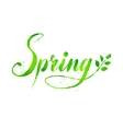 Spring word watercolor lettering vector image vector image