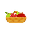 wicker basket with fruits vector image