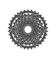 bicycle monochrome sprocket vector image