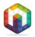 colorful hexagon logo vector image vector image