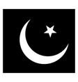 flag of pakistan 2009 vintage vector image vector image