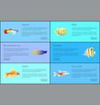guppy neon tetra fish set vector image