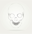 The symbol of the skull vector image vector image