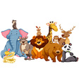 Wild animals living together vector image vector image