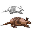 armadillo mascot animal with armoured shell icon vector image
