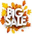 big sale background with orange leaves vector image vector image