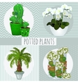 Four different green plants in pots vector image vector image