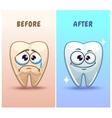 Funny cartoon teeth characters vector image