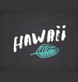 hawaii lettering handwritten sign hand drawn vector image