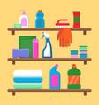 households goods shelves chemical detergent vector image vector image