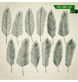 Set of hand drawn palm leaves vector image vector image