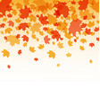 AutumnThanksgiving background vector image