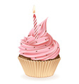 Birthday Candle Cupcake vector image vector image