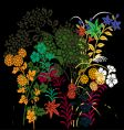 floral assortments vector image vector image