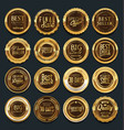 luxury golden design elements collection 2 vector image vector image