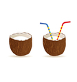coconut and two straws vector image vector image