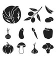 different kinds of vegetables black icons in set vector image