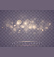 light abstract bokeh vector image vector image