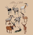 set antelopes hand drawn sketch animals vector image