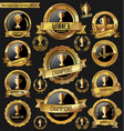award design golden badges and labels collection vector image