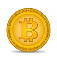 bitcoin coin vector image vector image