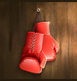 Boxing Gloves On Wall vector image vector image