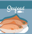 fishes fresh seafood vector image vector image